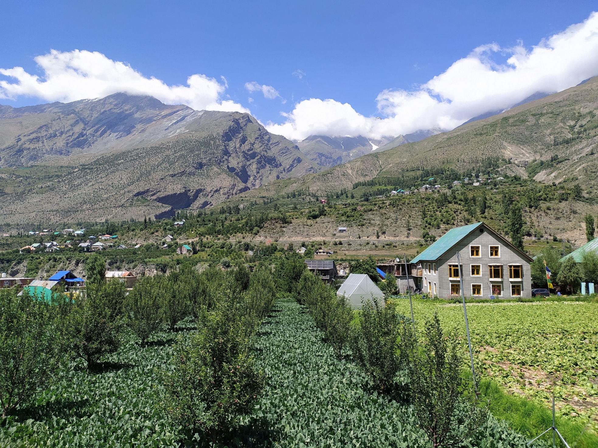 Jobrang village, Lahaul Valley, Himachal Pradesh