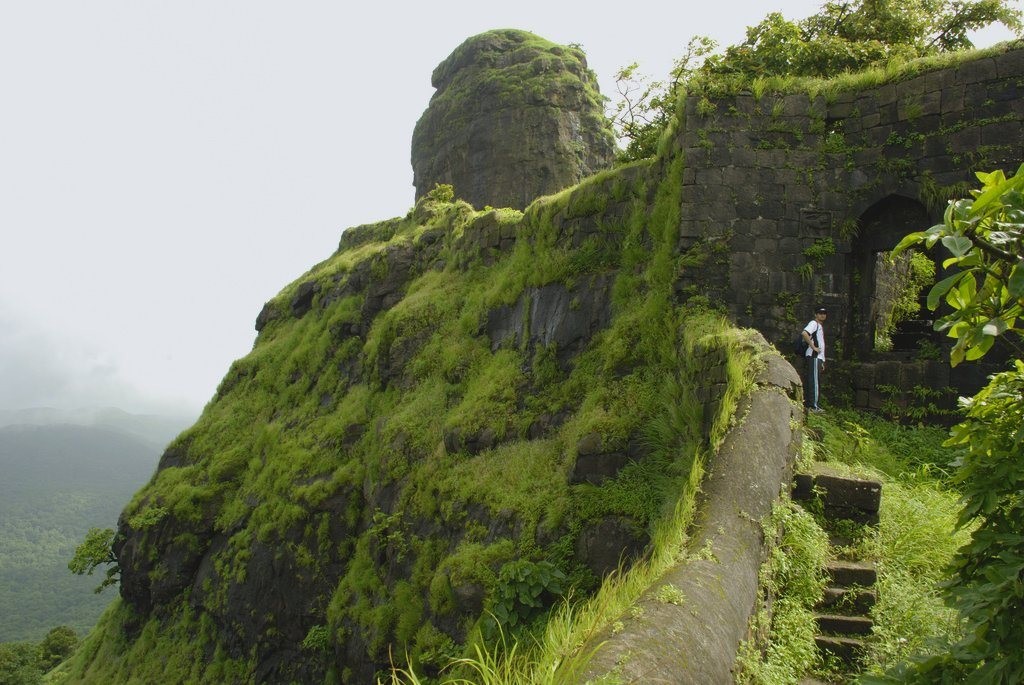 A hike to the Karnala Fort is only mandatory when you visit this sanctuary.