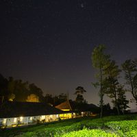 Beautiful night views of Zostel Wayanad and tea plantations