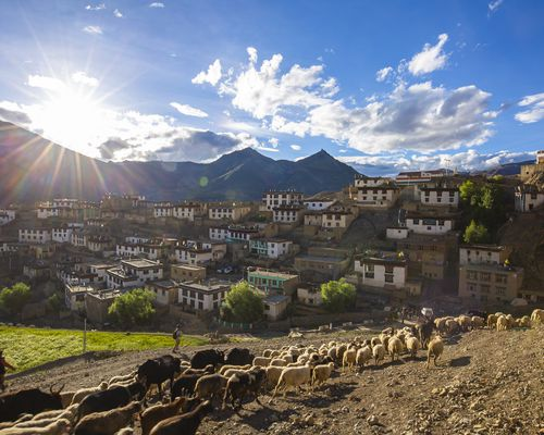 Zostel Escape | A Week in Spiti: Spring Edition