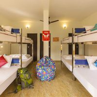 8 bed female dorm in Zostel Vagamon