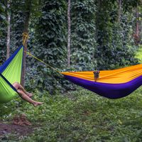 Travellers relaxing at Hammocks in the hostel courtyard