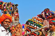 Zostel Pushkar